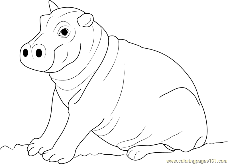 Cute Hippopotamus Baby Coloring Page