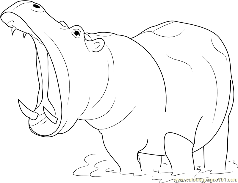 hippopotamus open mouth coloring page free hippopotamus coloring rh coloringpages101 com hippopotamass eating grass elephant eating - Hippo Coloring Pages
