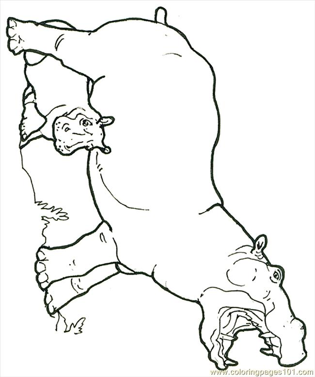 Mural Hhl Hippo With Baby Reversed Coloring Page Free