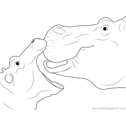 Close up of Hippopotamus coloring page