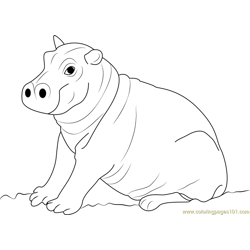Cute Hippopotamus Baby Free Coloring Page for Kids