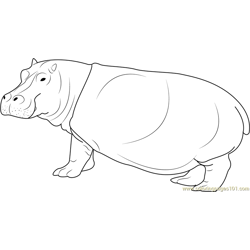 Hippopotami Free Coloring Page for Kids