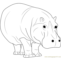 Hippopotamus Walking Free Coloring Page for Kids