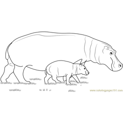 Hippopotamus With Baby Free Coloring Page for Kids