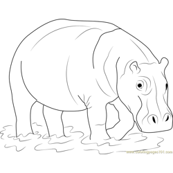 Hippopotamus in Water Free Coloring Page for Kids