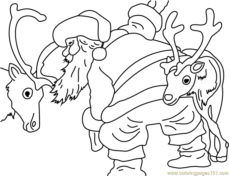Santa and his Deers Coloring Page