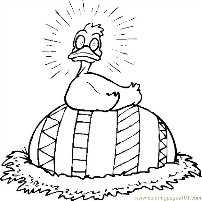 duck egg coloring pages - photo#30
