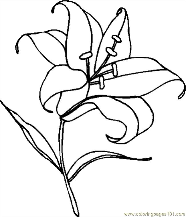 Easter Lily 5 Coloring Page