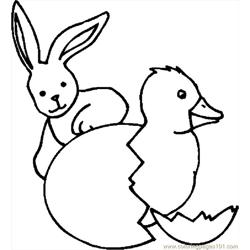 Bunny & Chick 2