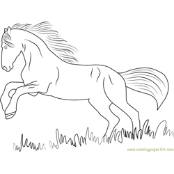 Black Horse Free Coloring Page for Kids
