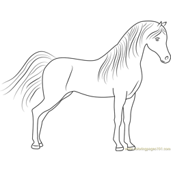 Cute Horse Free Coloring Page for Kids