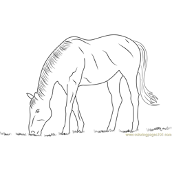 Horse Eating Grass Free Coloring Page for Kids
