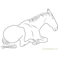 Sitting Horse Free Coloring Page for Kids