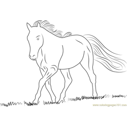White Horse Free Coloring Page for Kids