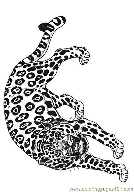 coloring jaguar reverse coloring page