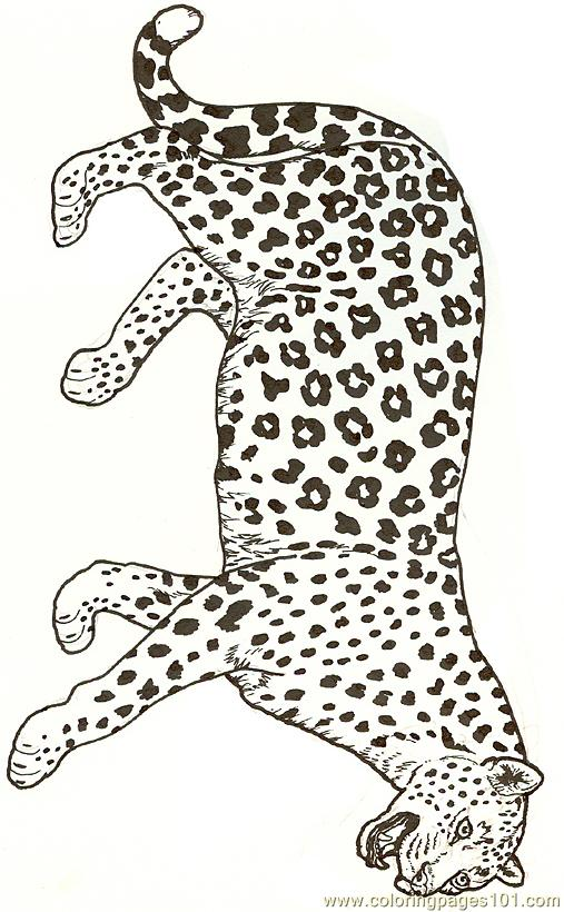 Leopard Reversed Coloring Page
