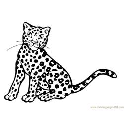 Tiger new 1 Free Coloring Page for Kids