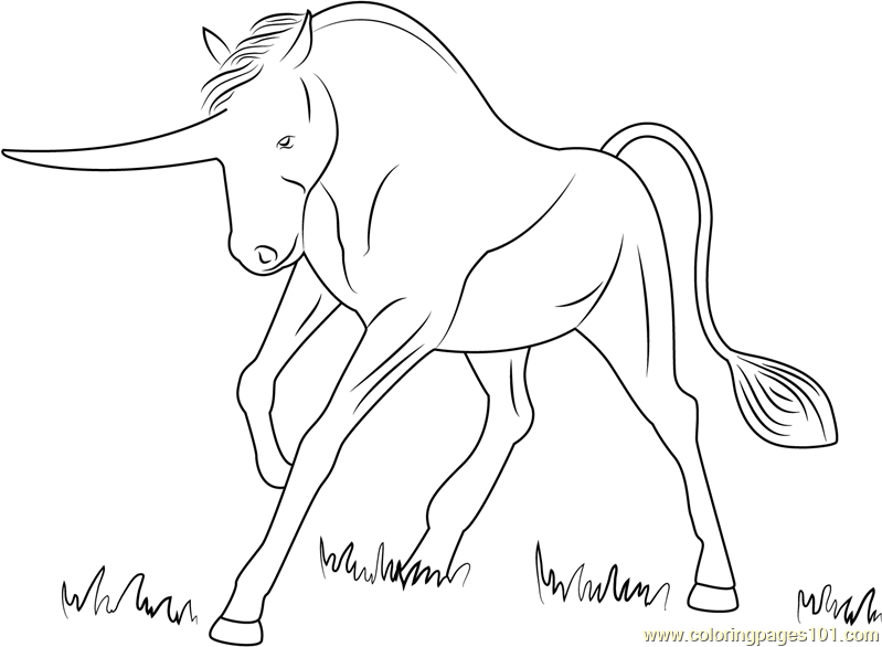 Big Unicorn Coloring Page