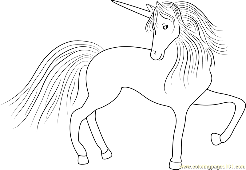 Pegasus Unicorn Coloring Page