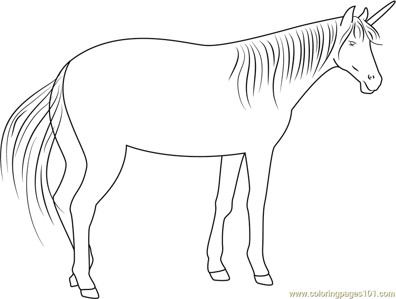 The Unicorn Coloring Page