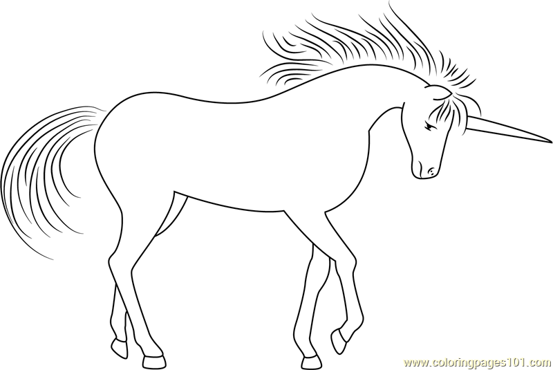 Unicorn Fantasy In The Forest Coloring Page