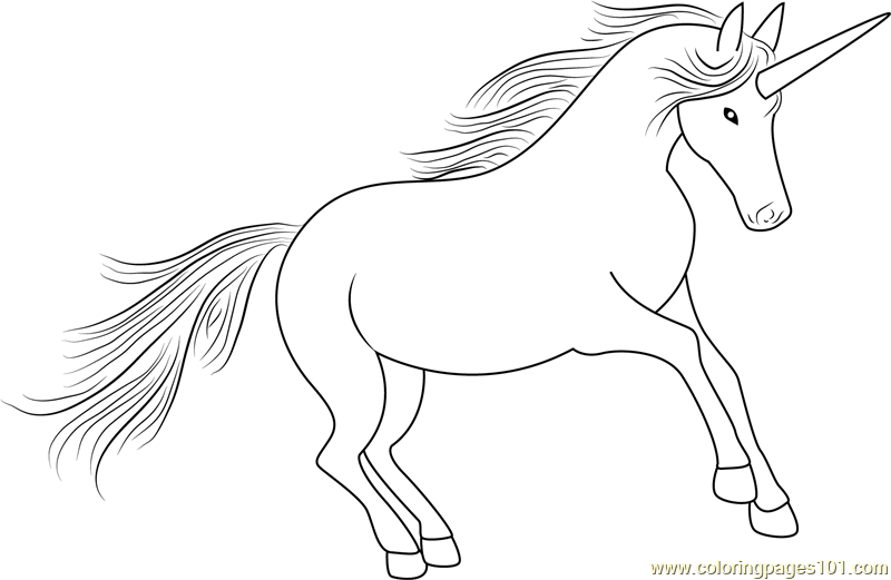Unicorn Look At Coloring Page