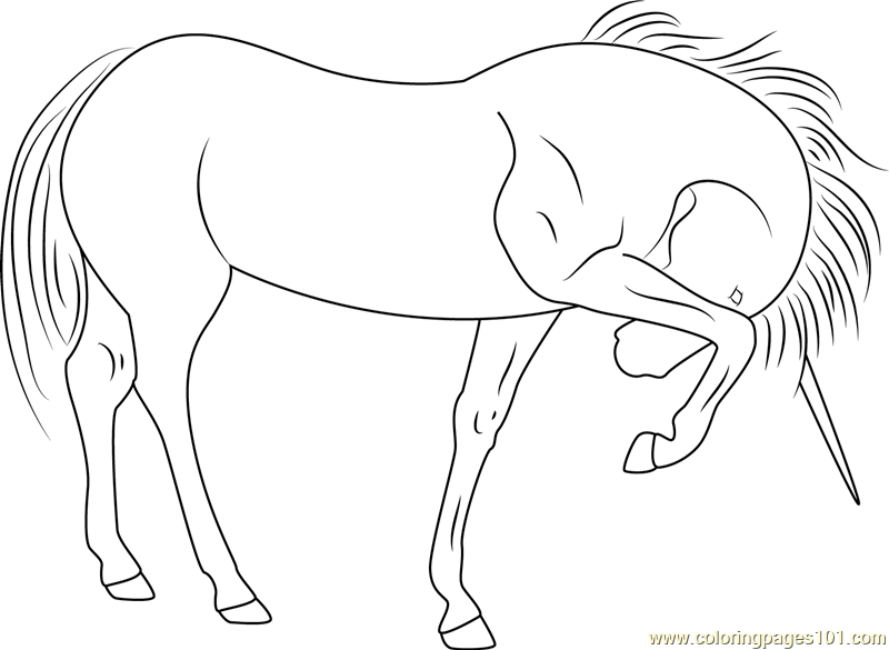 Unicorn See At Coloring Page