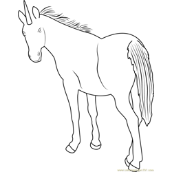 Unicorn Back Look