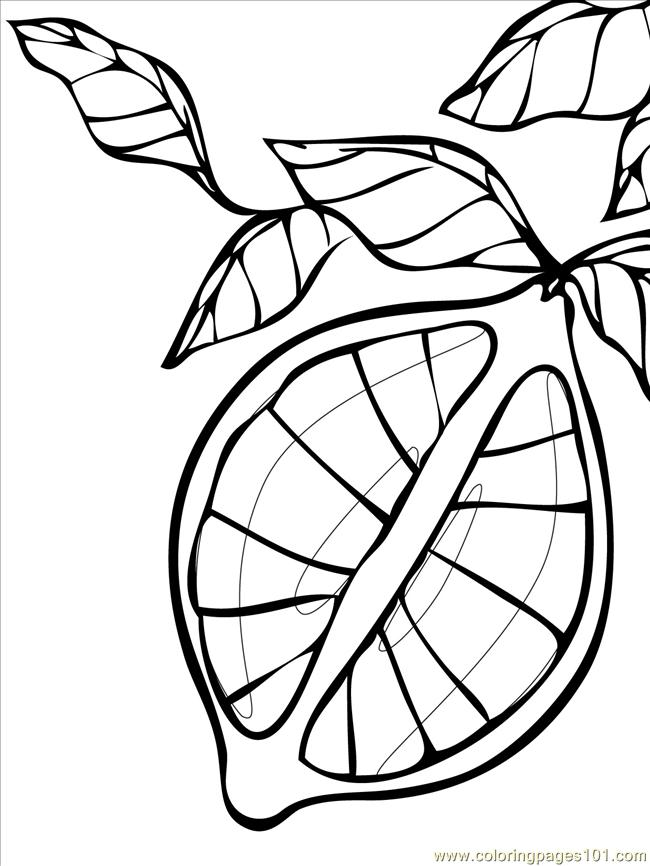 Lemon ink coloring page free lemons and limes coloring for Lemon coloring page