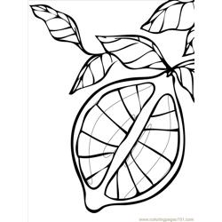 Lemon Ink Free Coloring Page for Kids