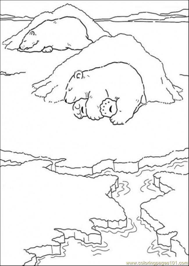 Polar Bear Is Sleeping Coloring Page Free The Little Polar Bear
