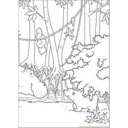 Hippo Meets Polar Bear Free Coloring Page for Kids