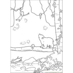 Polar Bear Is Looking At The Monkey Free Coloring Page for Kids