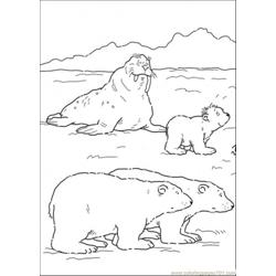 Polar Bears And Walrus Free Coloring Page for Kids