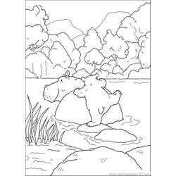Polar Bear Want To Sit On Hippo Free Coloring Page for Kids