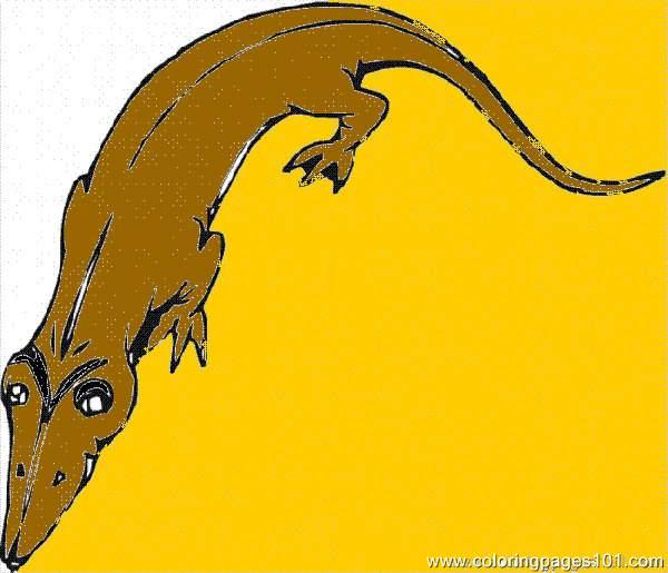 Lizard51 Coloring Page Free Lizard
