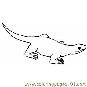 Walking Lizard Coloring Page