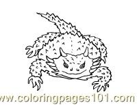 Lizard 9 Coloring Page