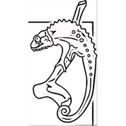 Lizard Free Coloring Page for Kids