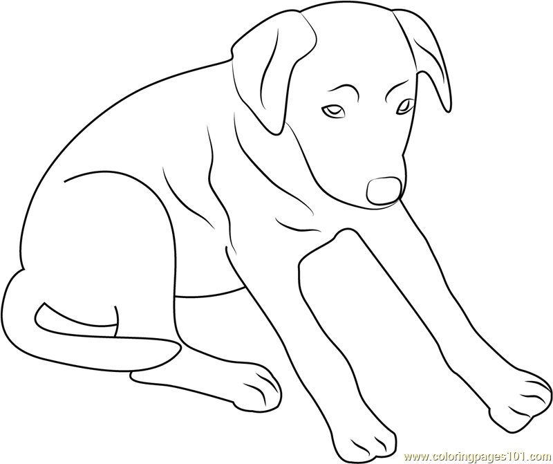 Black Up Dog Coloring Page