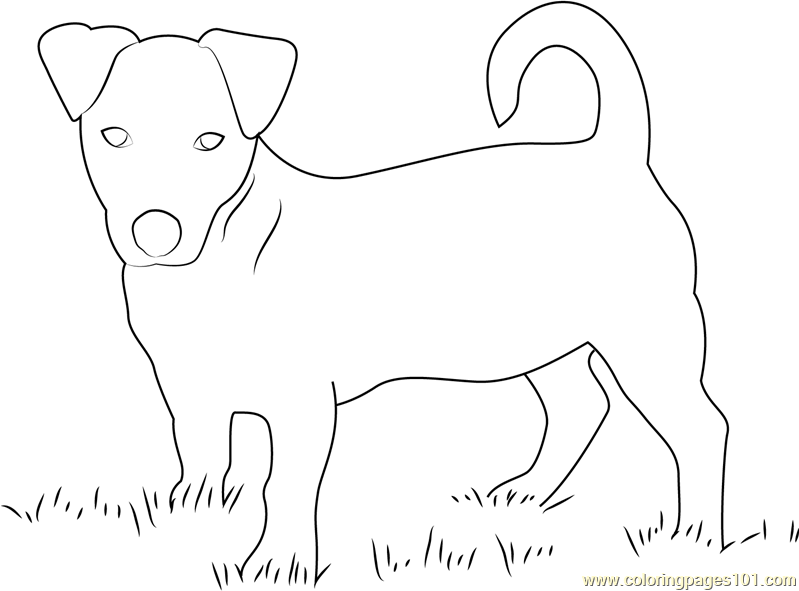 Cute Pup Coloring Page