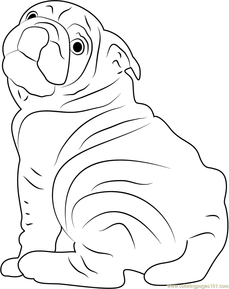 Dog Breeds in America Coloring Page