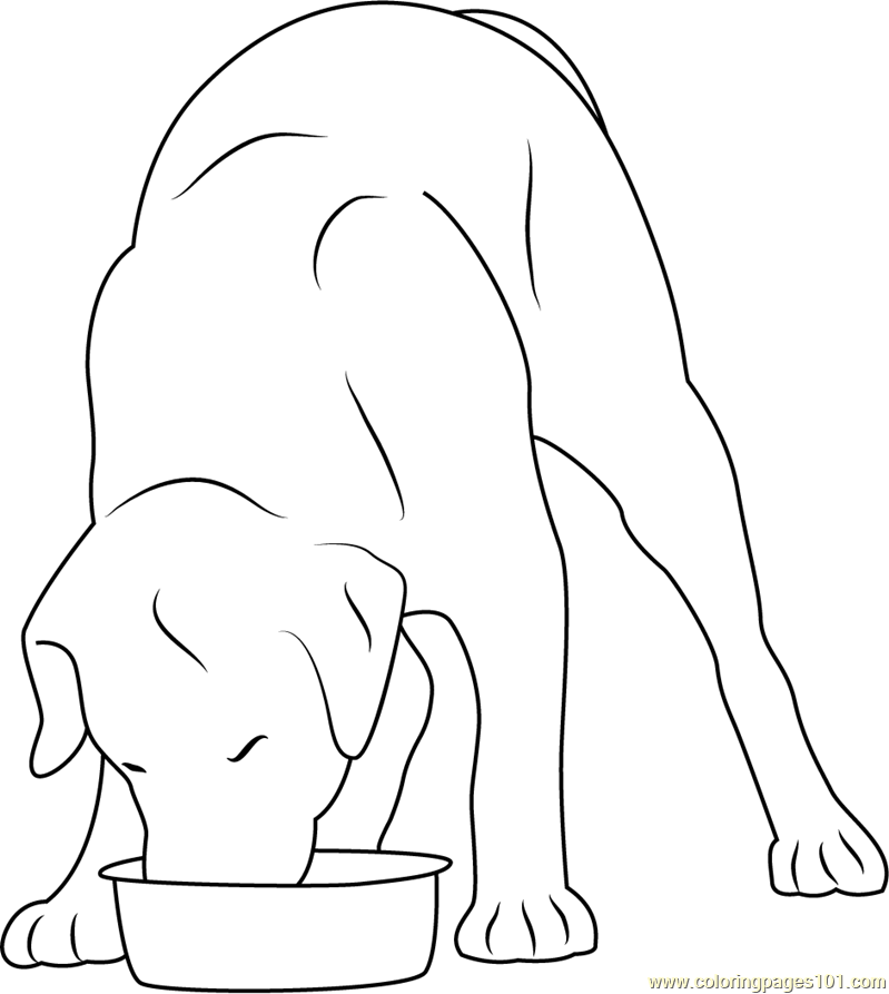 Dog Eating in Stainless Steel Bowl Coloring Page - Free ...