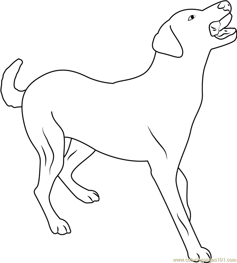 Dog Full Body Pose Coloring Page