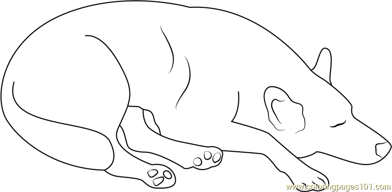 Dog Sleeping at Home Coloring Page
