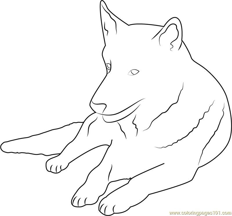 german shepherd coloring page - German Shepherd Coloring Pages Free 3