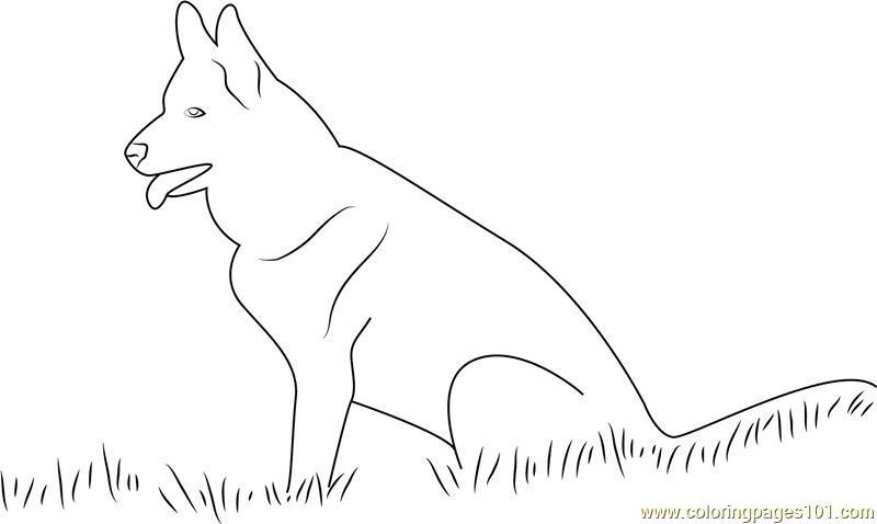 labrador dog coloring page  free dog coloring pages