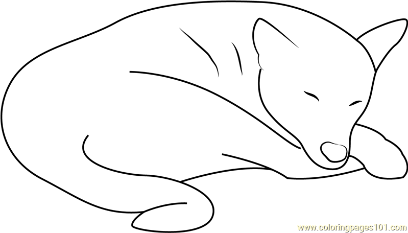 Sleeping Out Don Coloring Page