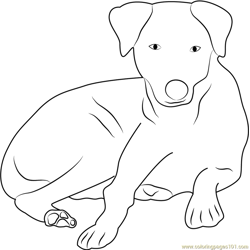 Charming Dog Sitting Free Coloring Page for Kids