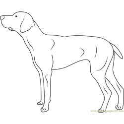 Dog Coloring Pages - Printable Coloring Pages of Dogs